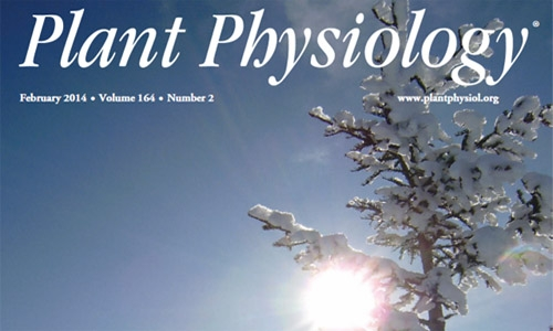 Couverture Plant Physiology