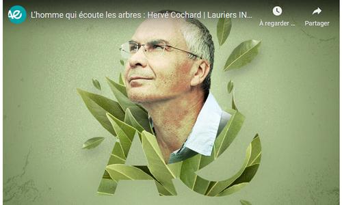 Hervé Cochard (laurier 2020)