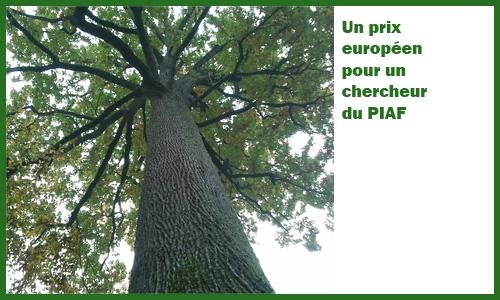 Prix européen Torres