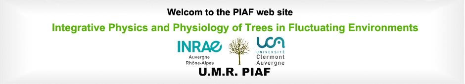 Welcom to the Piaf web site
