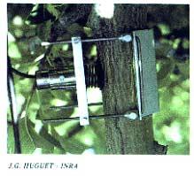 Capteur mesurant les micro-déformations de l'écorce