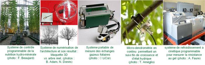 Presentation of MEA methods