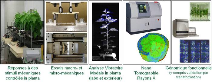 Presentation of MECA methods