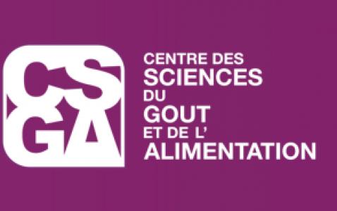 logo du CSGA