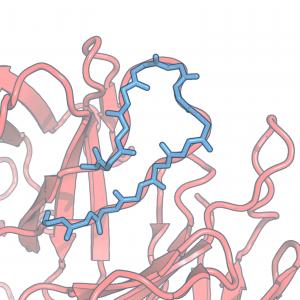 schéma de molécules complexes