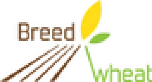 Logo Breedwheat
