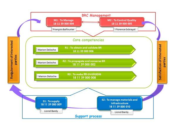 BRC Process mapping