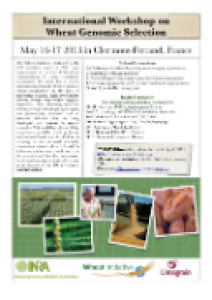 Wheat GS Workshop Flyer