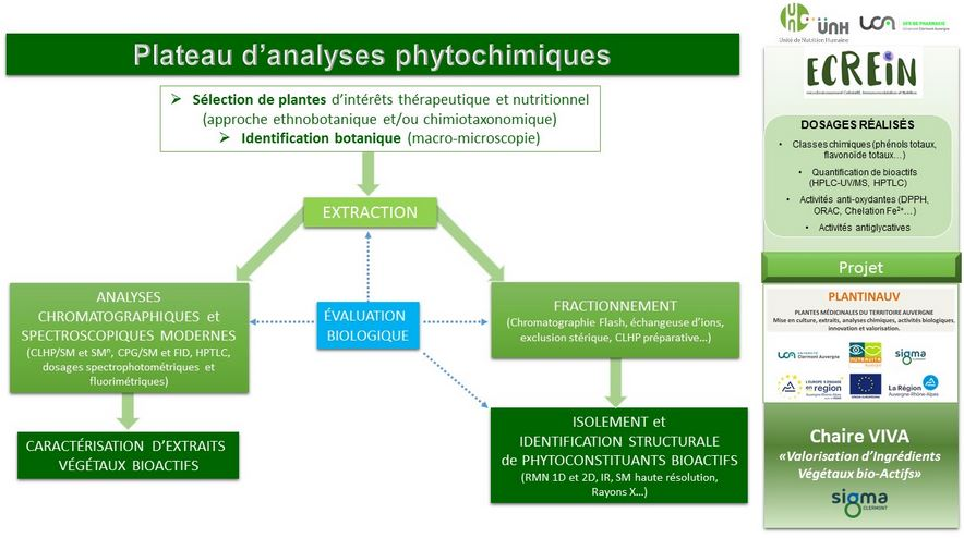 Plateau analyses phytochimiques