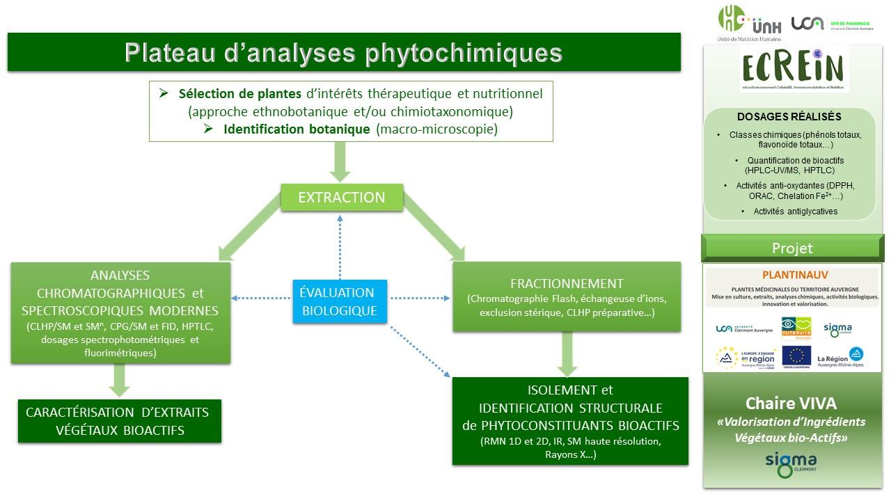 plateau phyto jpg