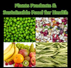 Plant Food Theme EN