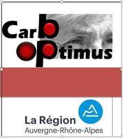 CARBOPTIMUS