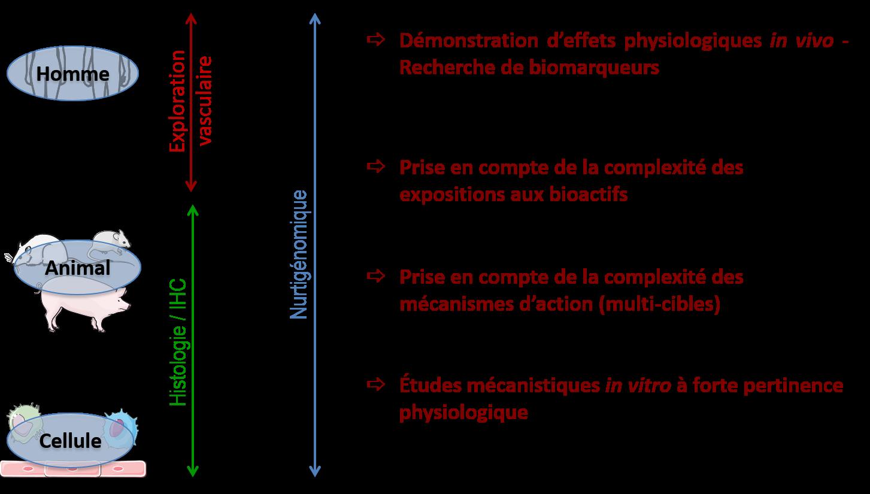 Approches & Méthodes FR