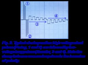 electroporateur fig2
